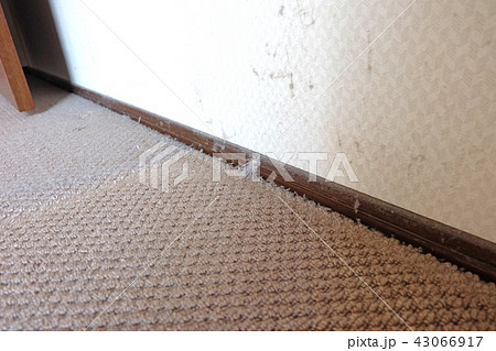 本棚の下のほこり 43066917