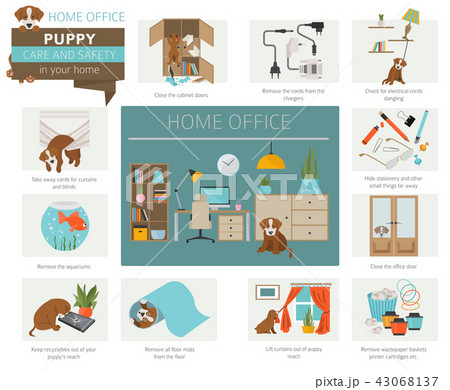 Puppy care and safety in your home. Home office 43068137