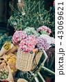 花ある暮らし 花屋 43069621