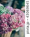 花ある暮らし 花屋 43069645