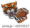 虎 アメリカンフットボール サッカーのイラスト 43070527