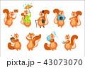 動物 リス りすのイラスト 43073070
