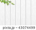 白木 葉 板のイラスト 43074499