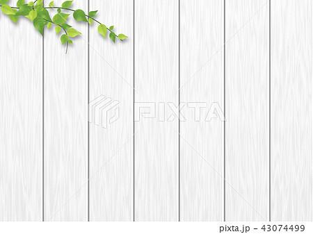背景素材 白木 葉のイラスト素材