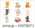 ねこ ネコ 猫のイラスト 43078071