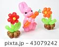 バルーンアート(ウサギと花) 43079242