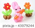 バルーンアート(ウサギと花) 43079244