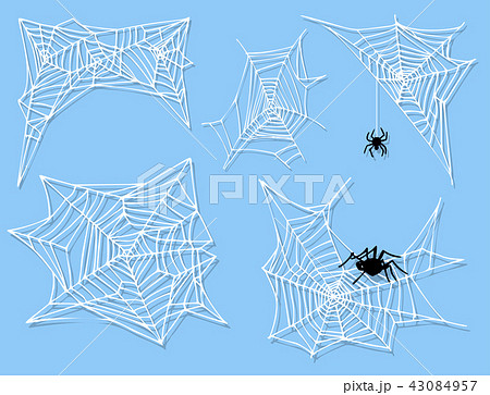 Spider web silhouette arachnid fear graphic flat scary animal design nature insect danger horror 43084957