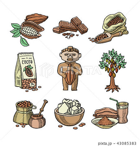 Vector cocoa products plantation handdrawn sketch icons chocolate cacao production sweet 43085383