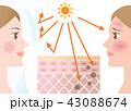 紫外線 紫外線対策 女性のイラスト 43088674