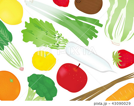 冬の食材 イラスト背景 のイラスト素材 43090029 Pixta