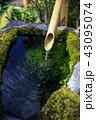 手水 つくばい 手水場の写真 43095074