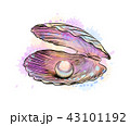 Opened shell with pearl inside from a splash of watercolor 43101192
