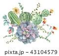 多肉植物 花 植物のイラスト 43104579