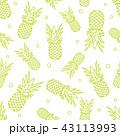 パイナップル パイン パインアップルのイラスト 43113993