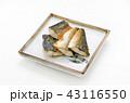 鯖の塩焼き 鯖 塩焼きの写真 43116550