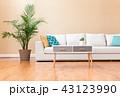 リビングルーム ソファー インテリアの写真 43123990
