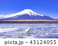 富士山 山中湖 冬の写真 43124055