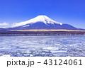 富士山 山中湖 冬の写真 43124061
