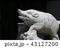 猪 43127200
