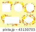 キバナコスモスと秋の菊のフレーム 43130703