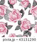 フローラル 花 水彩画のイラスト 43131290