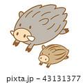 猪 亥 親子のイラスト 43131377