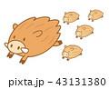 猪 亥 親子のイラスト 43131380