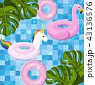 プール フラミンゴ 山車のイラスト 43136576