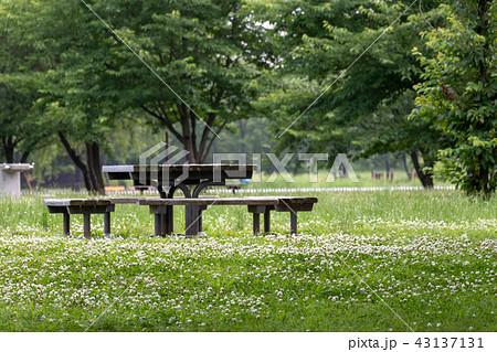舎人公園のベンチとテーブル 東京都足立区 舎人公園 43137131