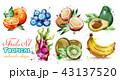 くだもの フルーツ 実のイラスト 43137520