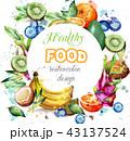 くだもの フルーツ 実のイラスト 43137524