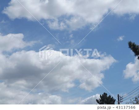 稲毛海岸の上青空と白い雲 43137566