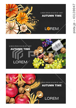Autumn fruits and vegetables collection 43139047