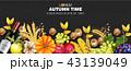 くだもの フルーツ 実のイラスト 43139049