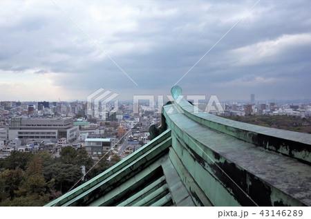 名古屋城の天守閣 43146289