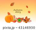 秋 葉 木の葉のイラスト 43146930