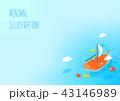 秋 帆船 葉のイラスト 43146989