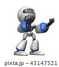 43147521
