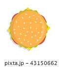 ハンバーガー バーガー 料理のイラスト 43150662