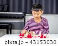 チェス 子 子供の写真 43153030
