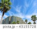 晴れ 街 マンションの写真 43155728