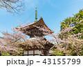 本法寺 和 寺の写真 43155799