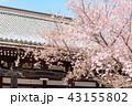 本法寺 和 寺の写真 43155802