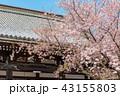 本法寺 和 寺の写真 43155803
