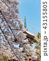 本法寺 和 寺の写真 43155805