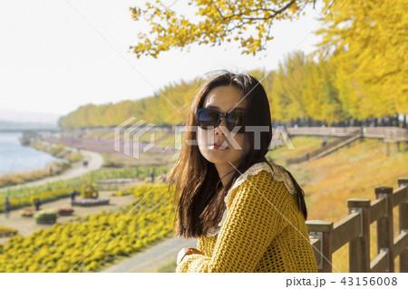 秋 イチョウ 木 43156008