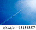 疾走する翼 43158357