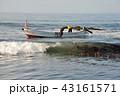 昆布漁 43161571