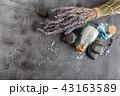 塩 食塩 スパの写真 43163589